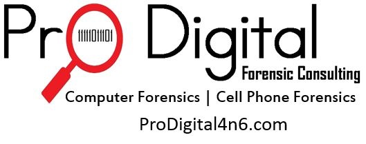 Pro Digital Forensic Consulting